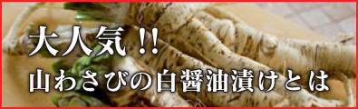 top_bn-02